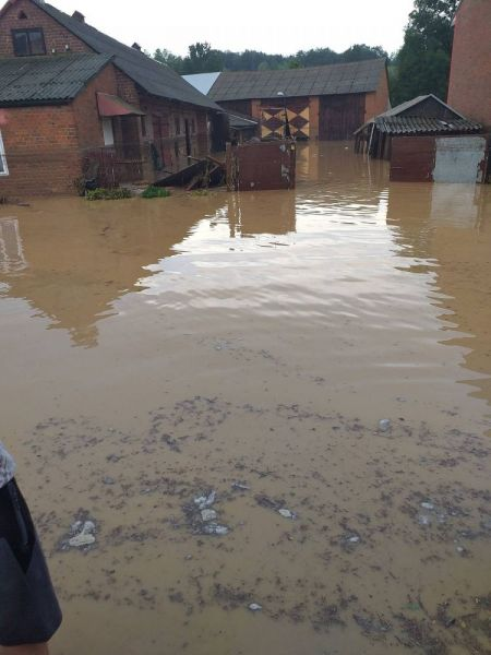 powod-cztrzecia001