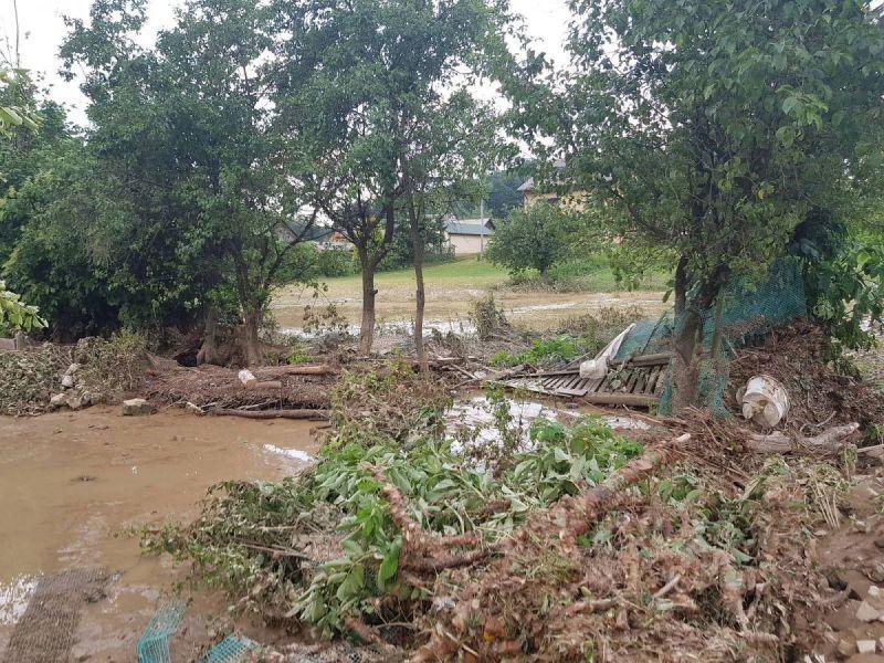 powod-cztrzecia057