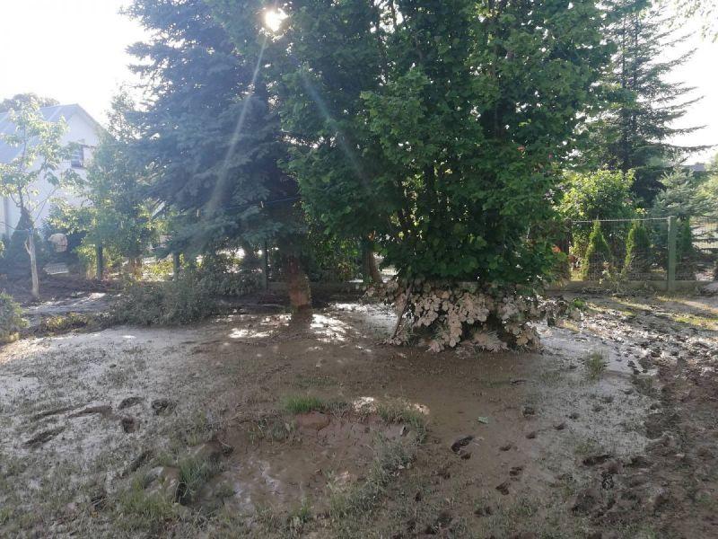 powod-cztrzecia106