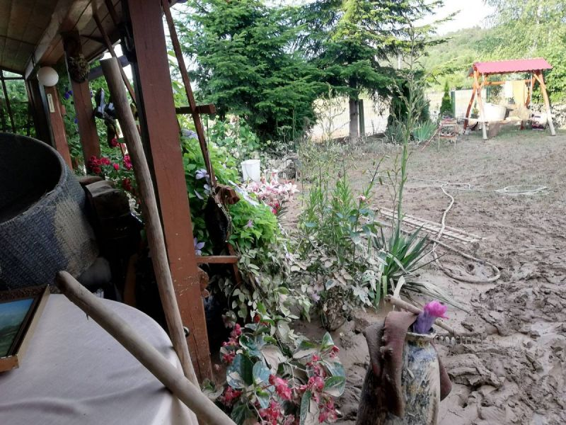 powod-cztrzecia113