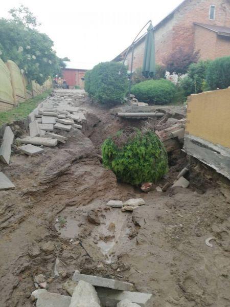powod-cztrzecia126