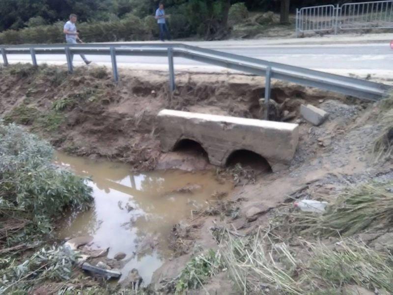 powod-cztrzecia137