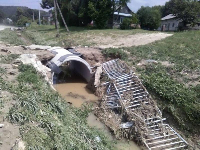 powod-cztrzecia147