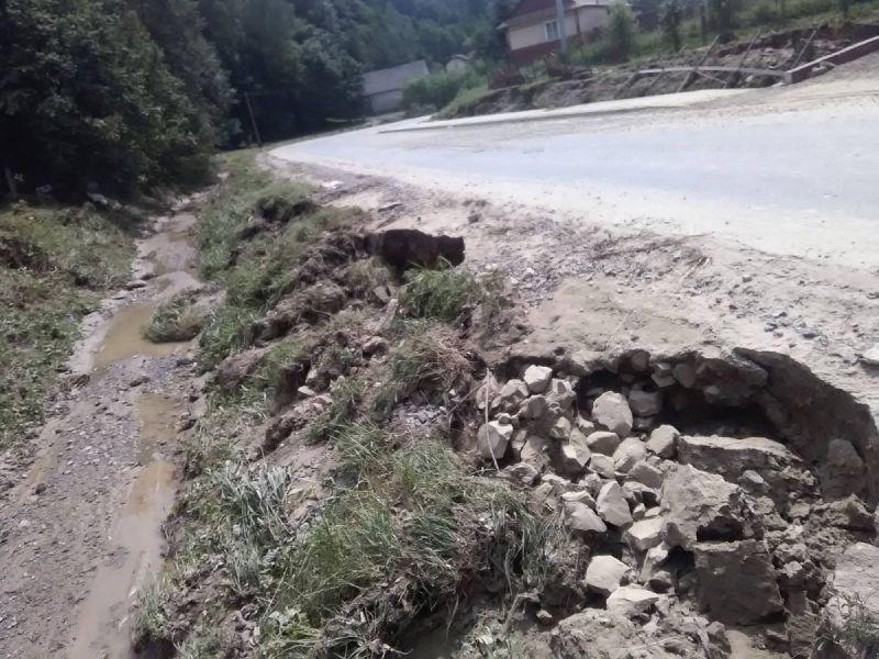 powod-cztrzecia152