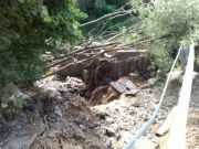 powod-cztrzecia132