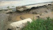 powod-cztrzecia166